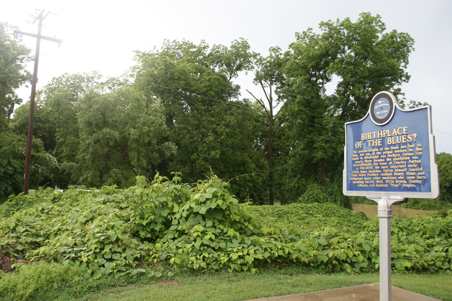 Different view of the sign - what a beautiful spot Dockery is located on!