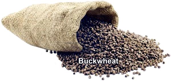 BuckwheatBag-transbkgd