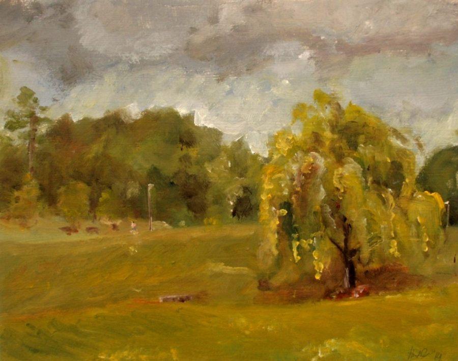 willow at lamar park