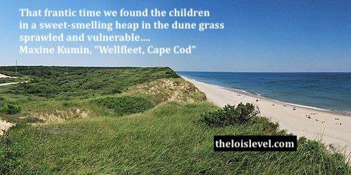White Crest Beach at Wellfleet, Cape Cod. Matt Wade Photography via Wikimedia Commons.