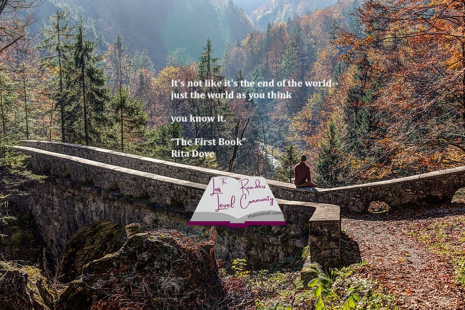 A person looking at a mountain forest from a bridge, quote: