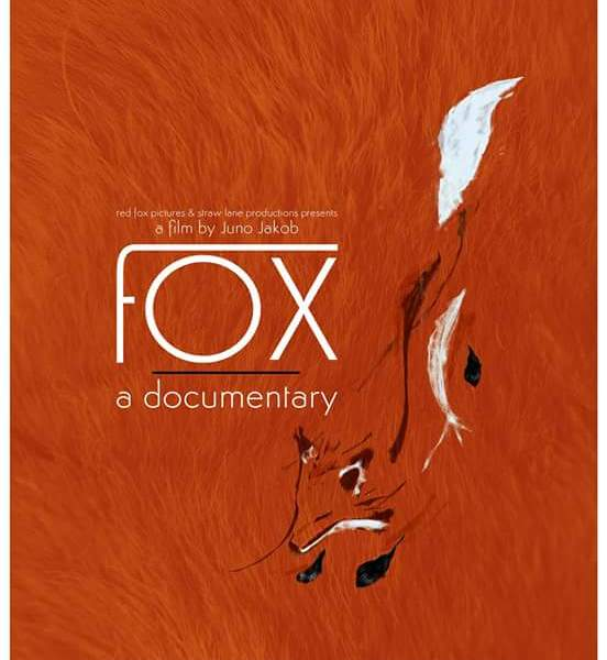 Fox A Documentary By Juno Jakob - Review