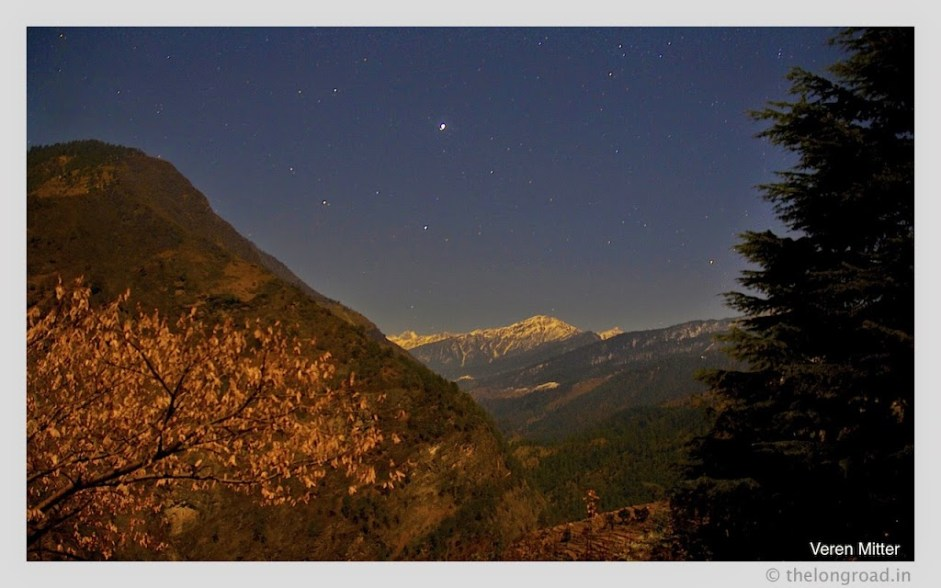 View of mountain and trees at night uutarakhand India. trek ends