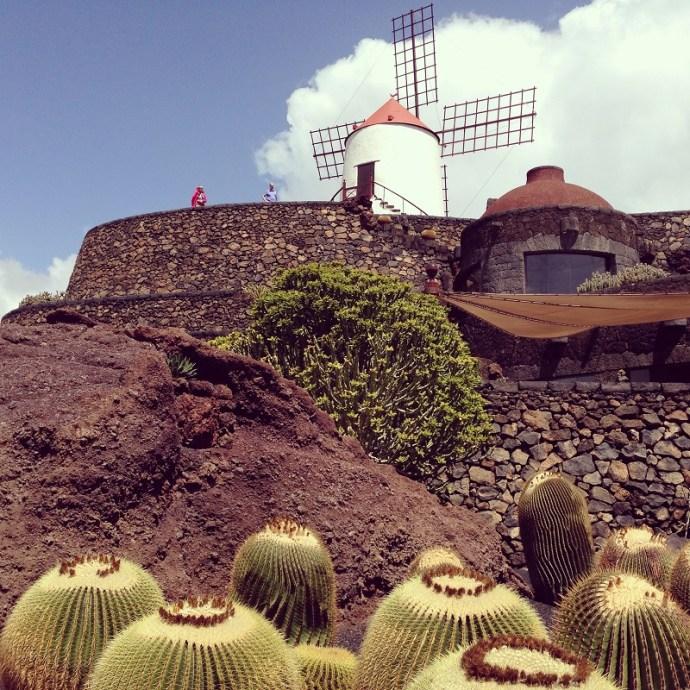Jardin-de-cactus-manrique-photo-credit-by-TheLostAvocado