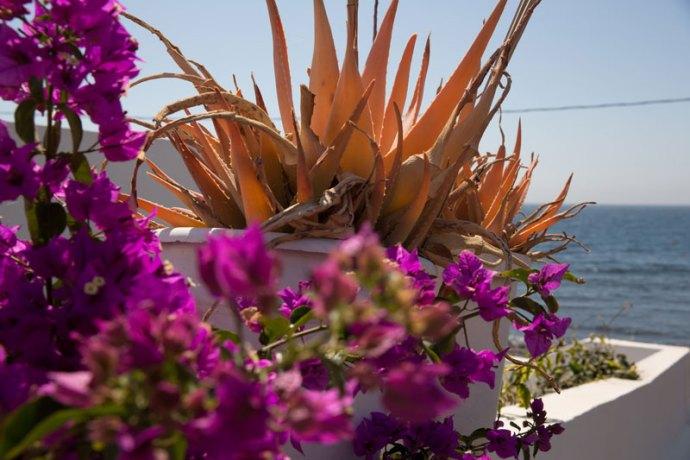 Playa-Quemada-Lanzarote- Photo credit by The Lost Avocado.com