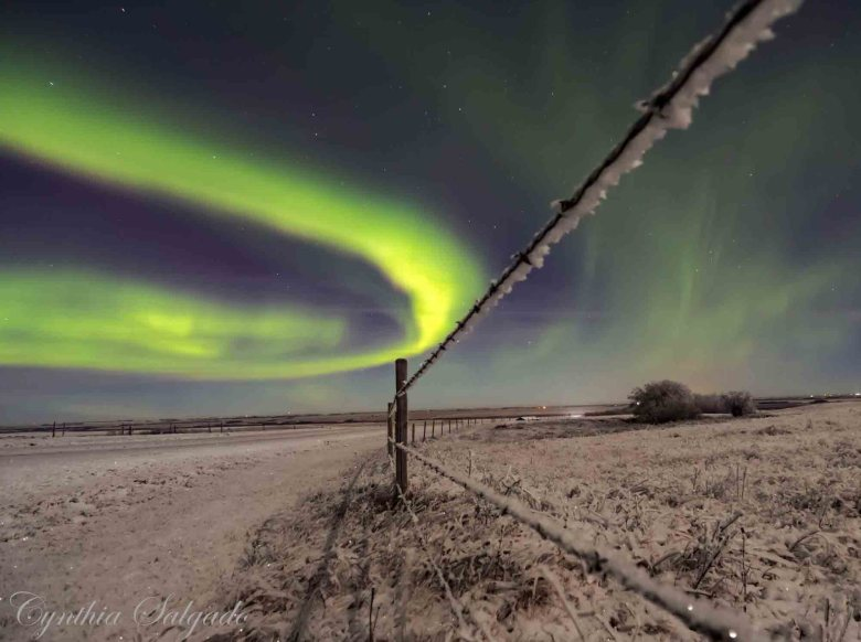 Credit: Cynthia Salgado, taken outside of Wilkie, SK