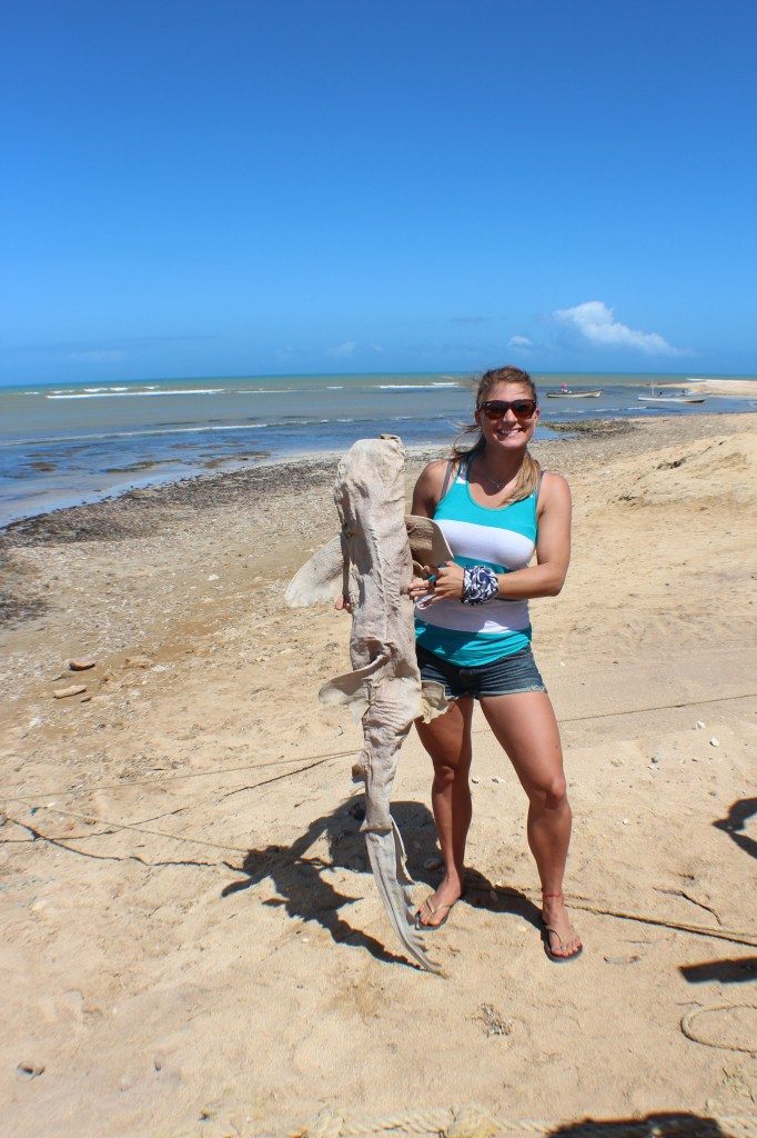 A self-professed biology nerd, I couldn't pass up an opportunity to examine and grab a photo with a dried-up shark carcass.