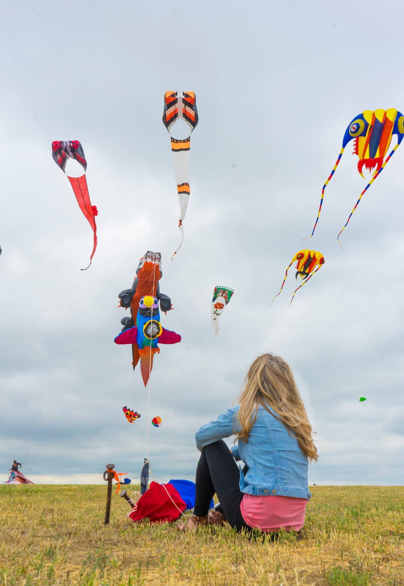 The Art Of Flying Kites At The Windscape Kite Festival
