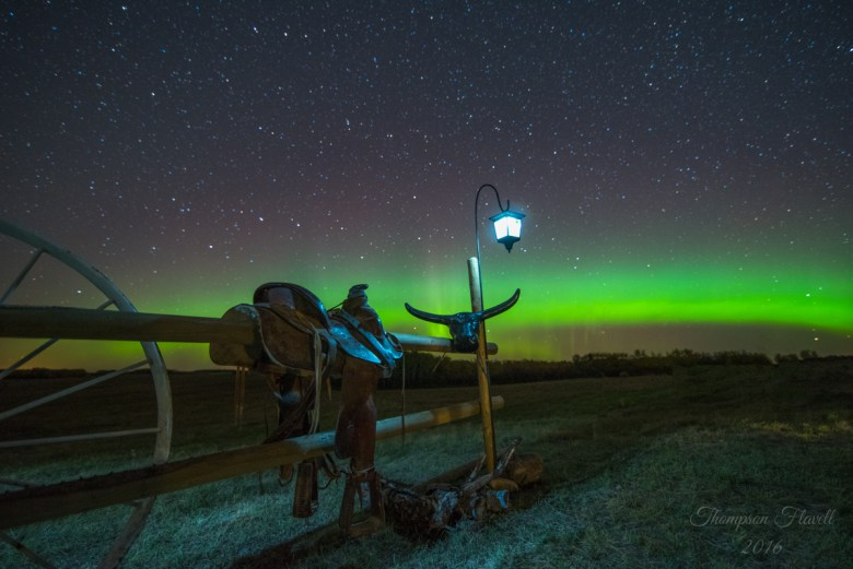 Credit: Leila Thompson Flavell, taken on the Flavell family farm near Bulyea, SK