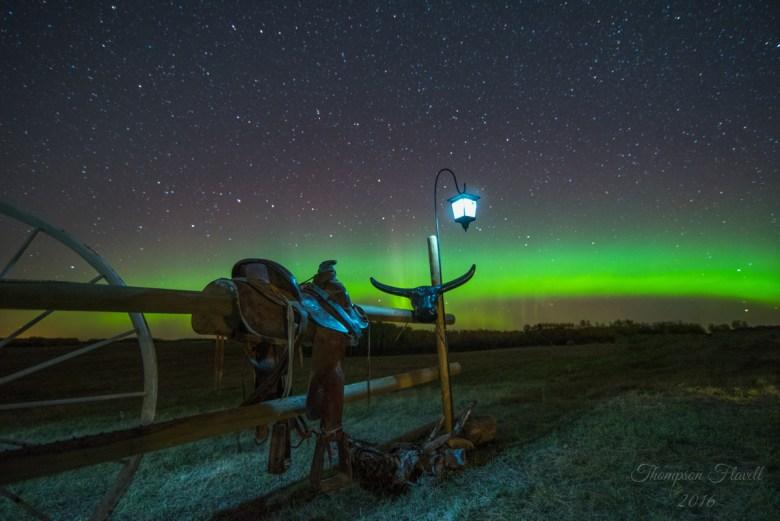 Credit: Leila Thompson Flavell, taken on the Flavell family farm near Bulyea, SK