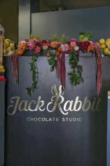 jack rabbit5