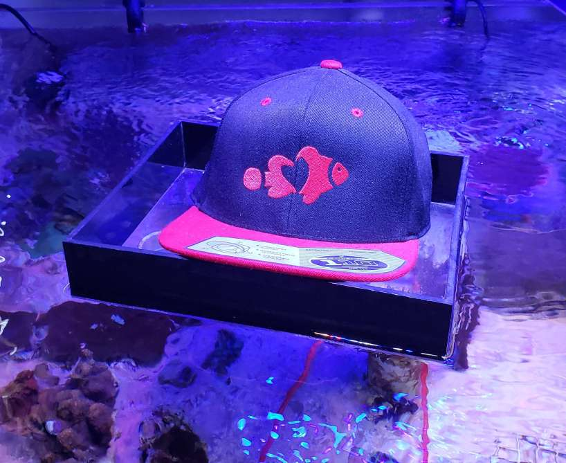 The Love Aquarium Hat - Red