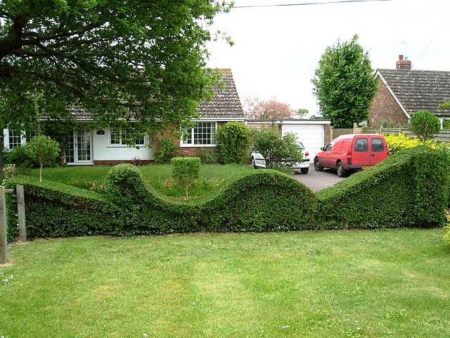 cobertura topiary