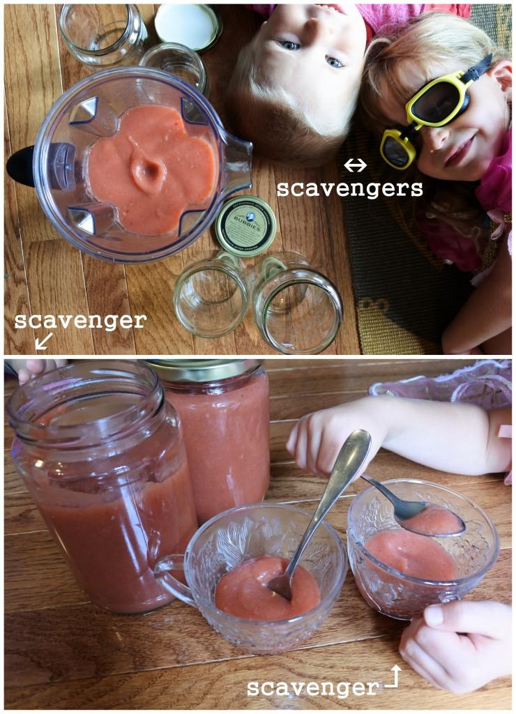 applesauce scavengers