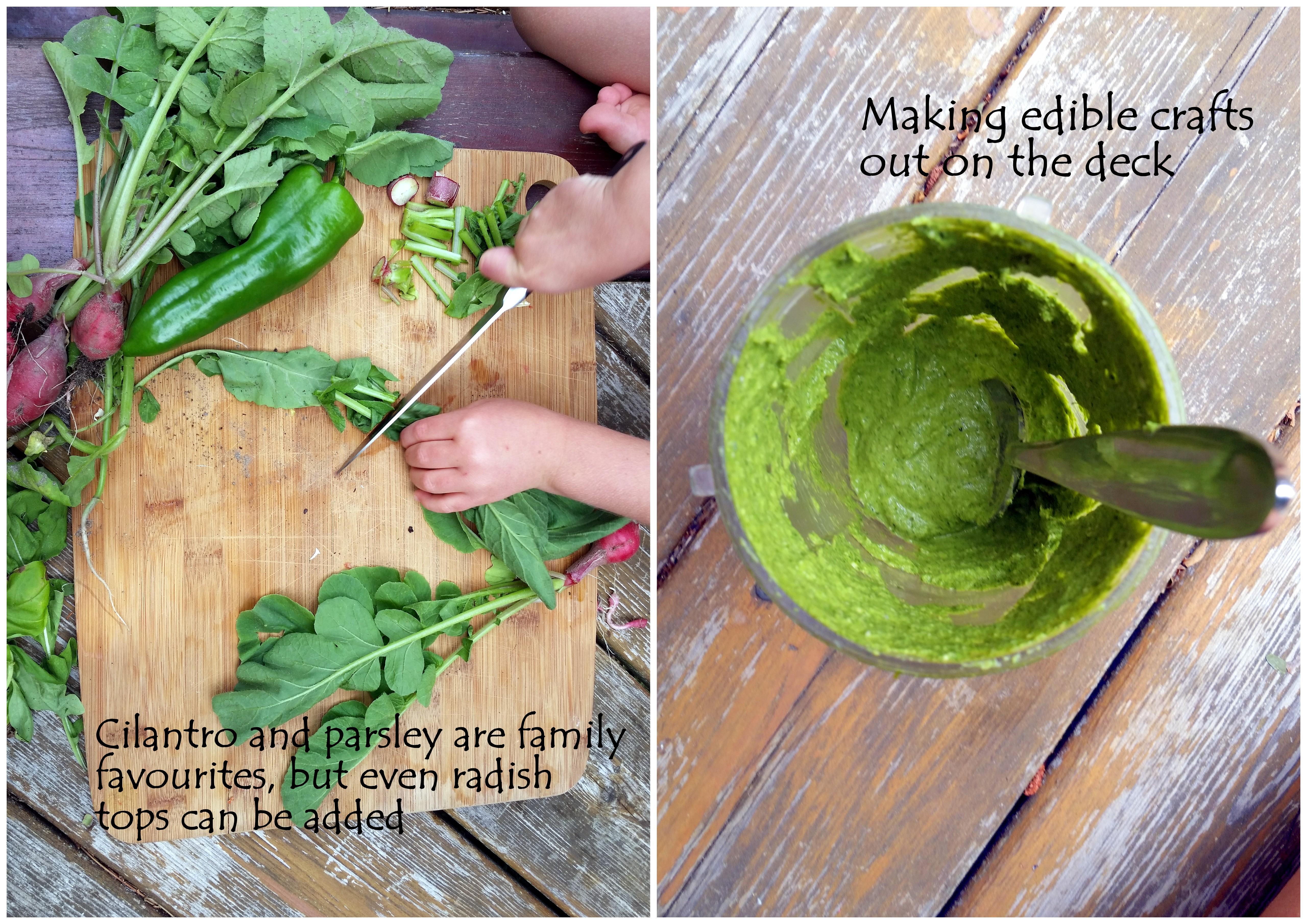 greens cilantro hemp seeds garden kids cooking recipe loven life healthy eating edible crafts