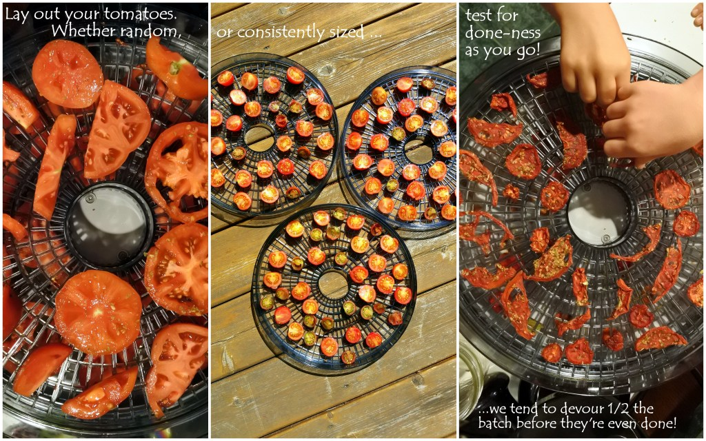 homemade sundried tomatoes dehydrate zero waste organic food healthy eating kids snacks recipe