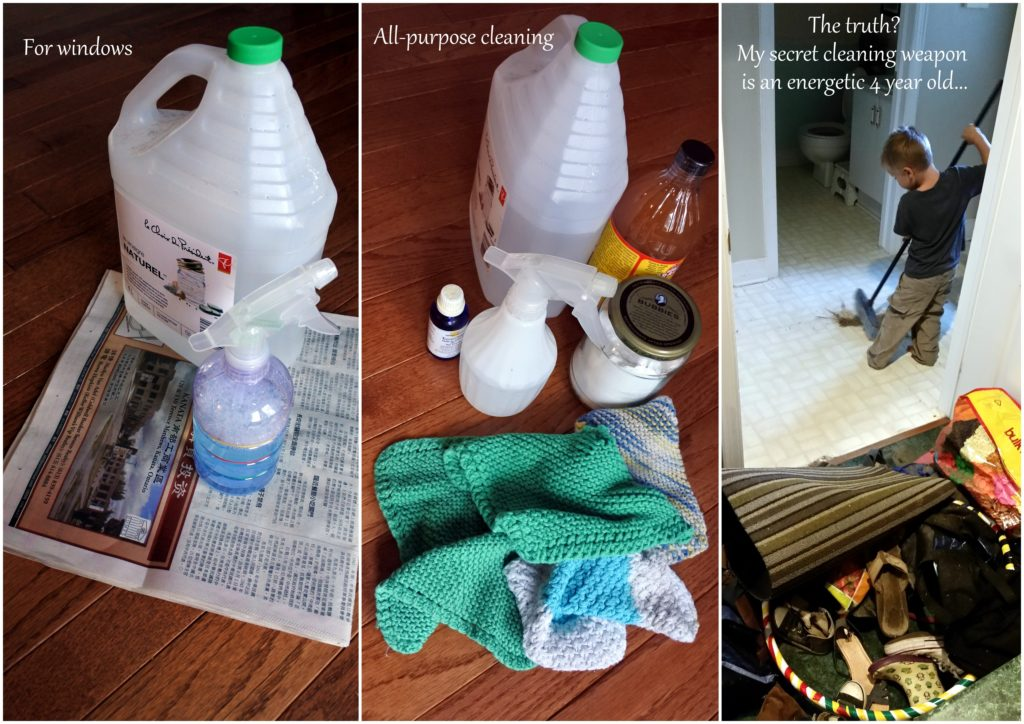 zero waste ottawa DIY cleaning products health sustainable window cleaner washing no waste green products jackielane l'oven life canada
