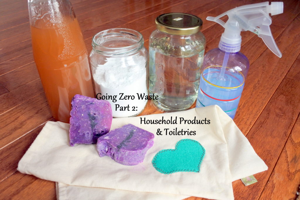 zero waste ottawa canada sustainable cleaning products green soap toothpaste toiletries household cleaners DIY homemade healthy l'oven life naturally jackielane