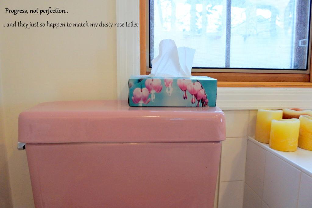 retro pink toilet bathroom tissue kleenex toiletries green household cleaning products soap sustainable zero waste ottawa