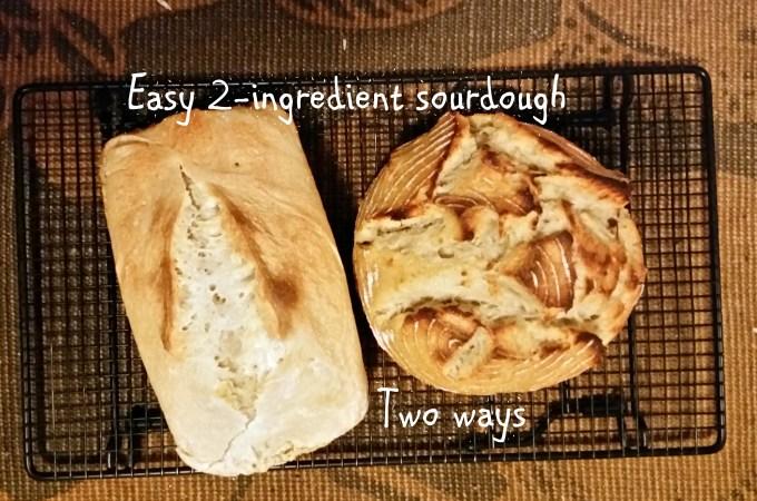 sourdough bread fermented starter culture rustic sandwich ingredients baking ottawa recipe jackie lane vegan gluten