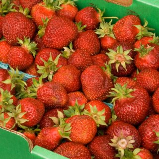 Hillsdale Farmers Market Hood Strawberries