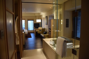 Park Hyatt Beijing - Park King Room