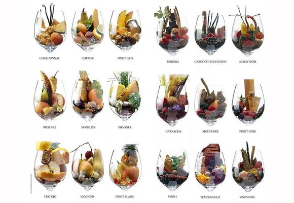 Series de copas con los aromas del vino