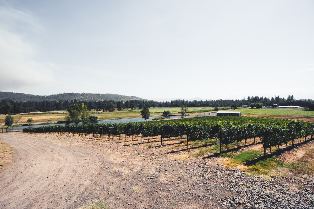 Kriselle Cellars Vineyard