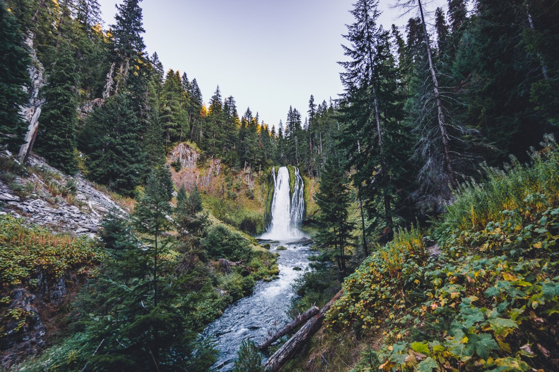 Best Waterfall Hikes in Umpqua National Forest