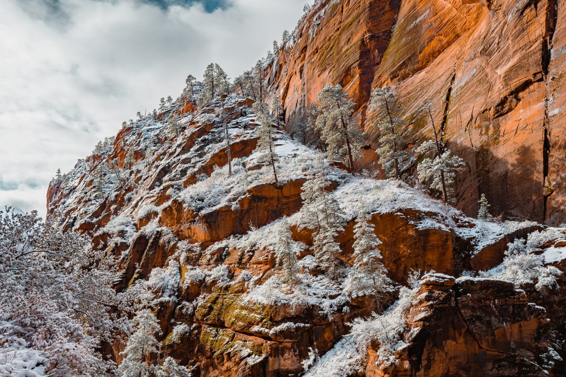 View of Owl's Pass / Refrigerator Canyon