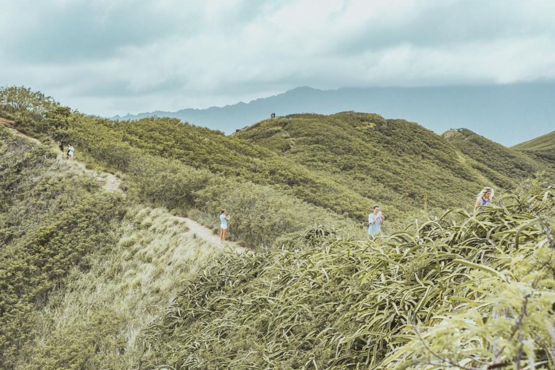 Hiking the Kaiwa Ridge