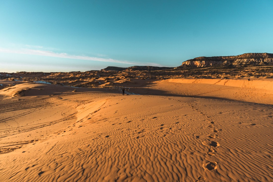 View of Coral Pink Sand Dunes State Park