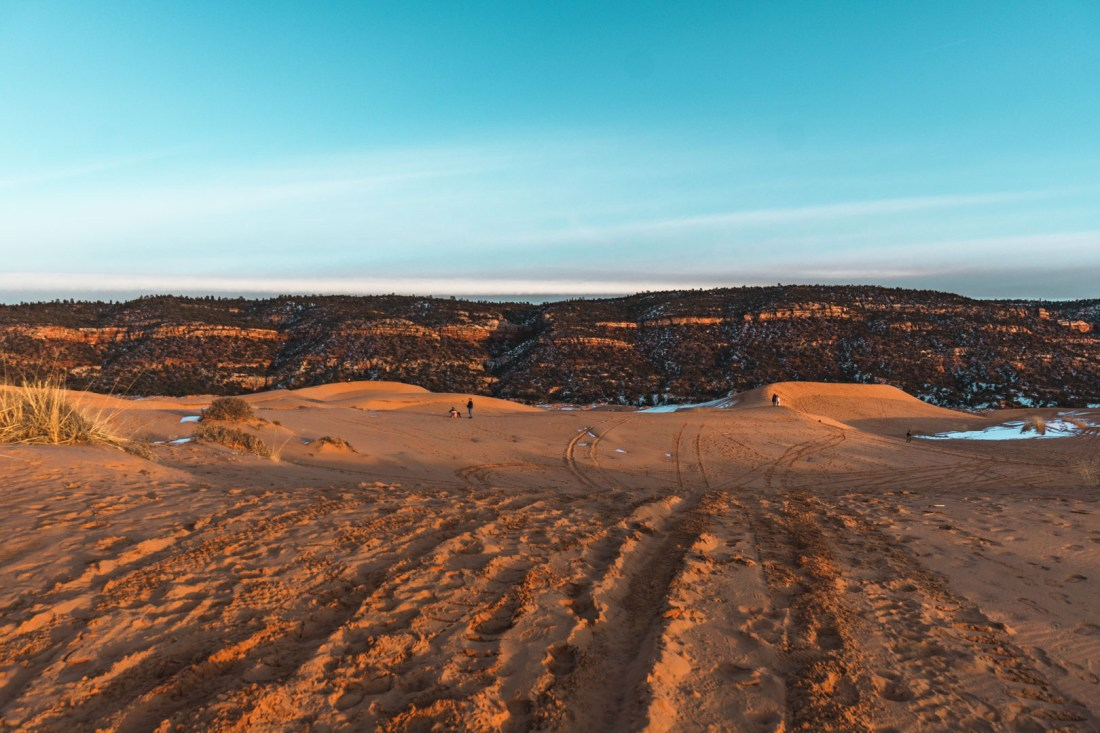 ATV tire tracks in the sand