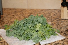 big pile of kale