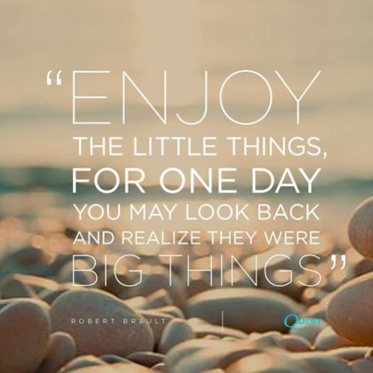 Small Things, and 2015 Thank You! - The Lyons' Share Wellness