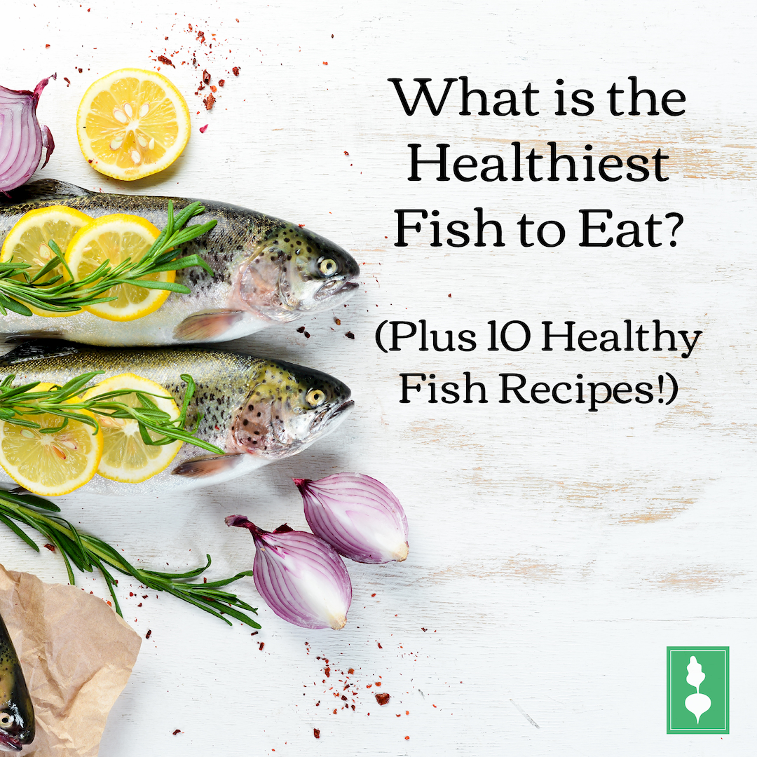What is the Healthiest Fish to Eat? (Plus 10 Healthy Fish Recipes!)