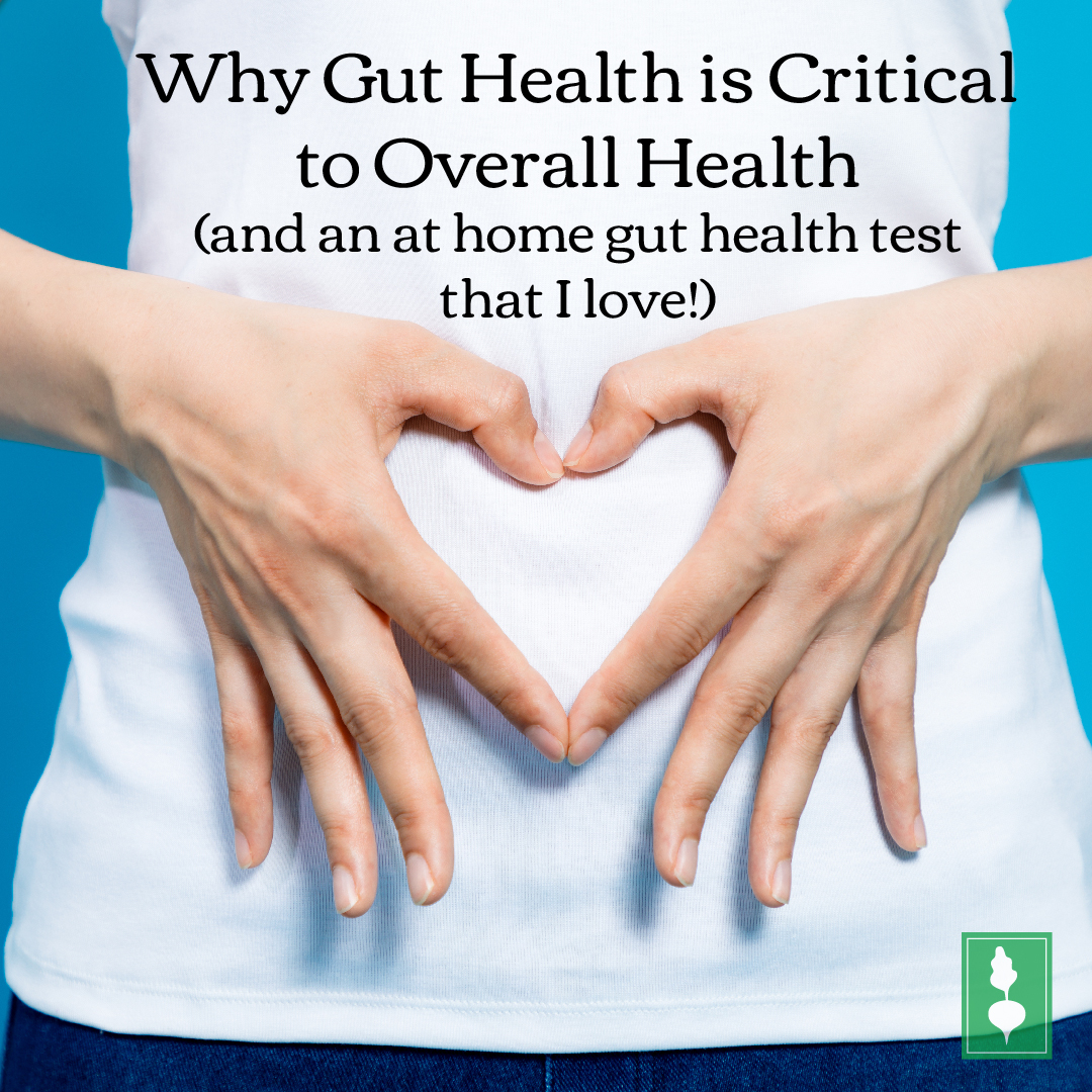 Why Gut Health is Critical to Overall Health (and an at home gut health test that I love!)