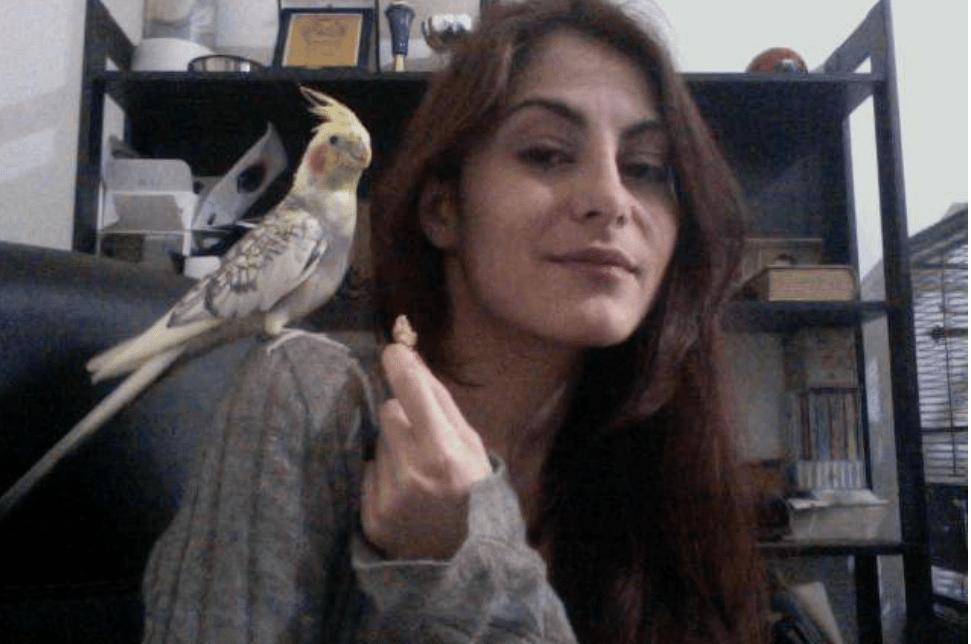 pirati pappagallo nilsson