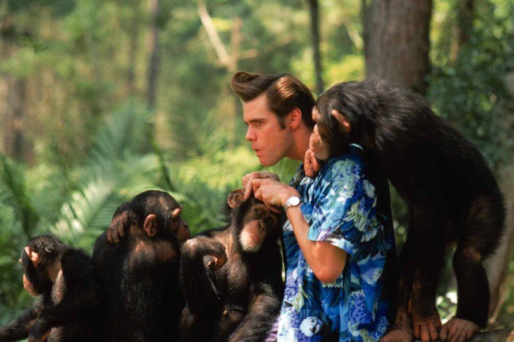 ace ventura scimmie