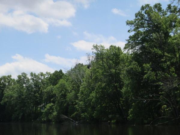 wolf-river-canoe-paddling-006