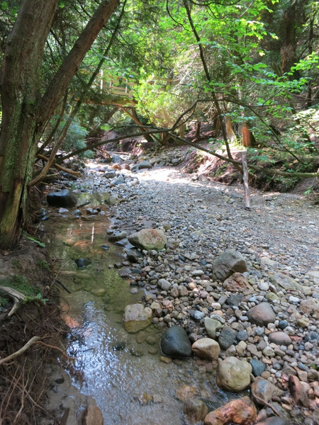 lion-gorge-trail