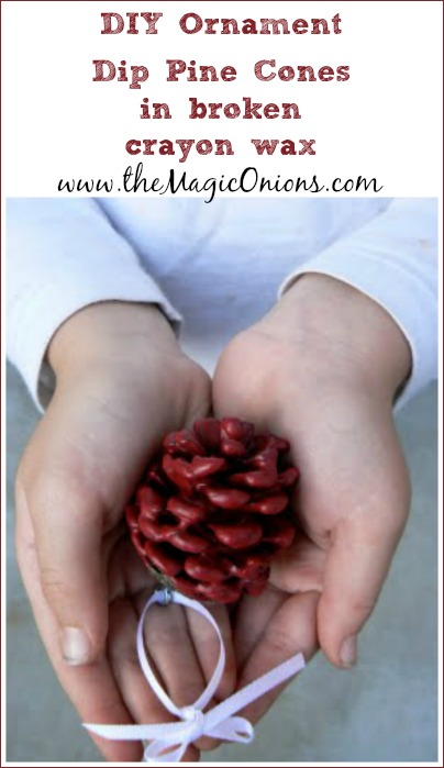 DIY Pine Cone Ornament with broken crayons : www.theMagicOnions.com