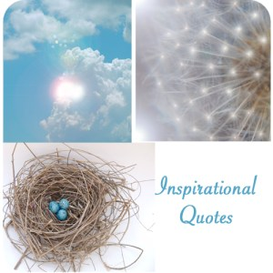 Inspirational Quotes | The Magic Onions