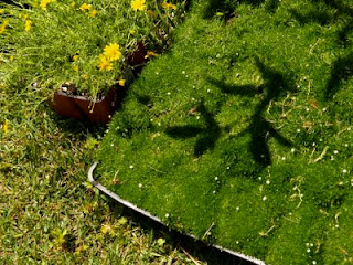 Fairy Garden, magical little garden for the fairies, gardening with children