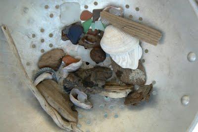 A Colander full of Sea Treasure.