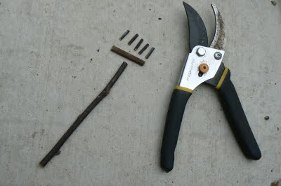 First, The Rake. I Used My Garden Scissors To Cut A Twig For The Handle, A  Smaller Twig For The Rakes Head And 5 Tiny Twigs For The Rakes Teeth.