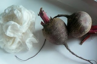 Naturally Dyed Silks, using plant material to die silks