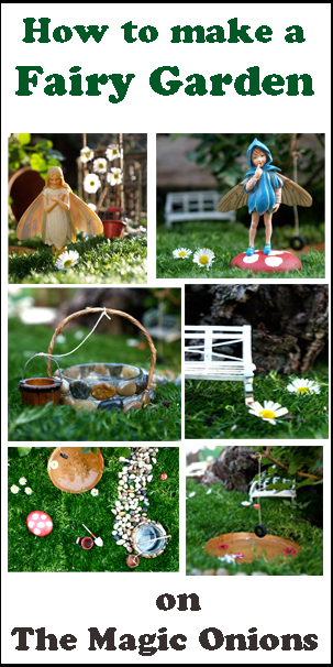 Tutorial for a Succulent Fairy Garden - The Magic Onions