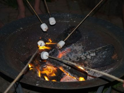 Roasting Marshmallows - www.theMagicOnions.com
