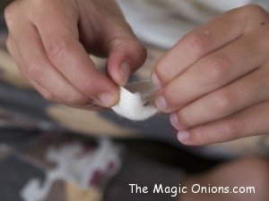 Raising Silkworms on The Magic Onions
